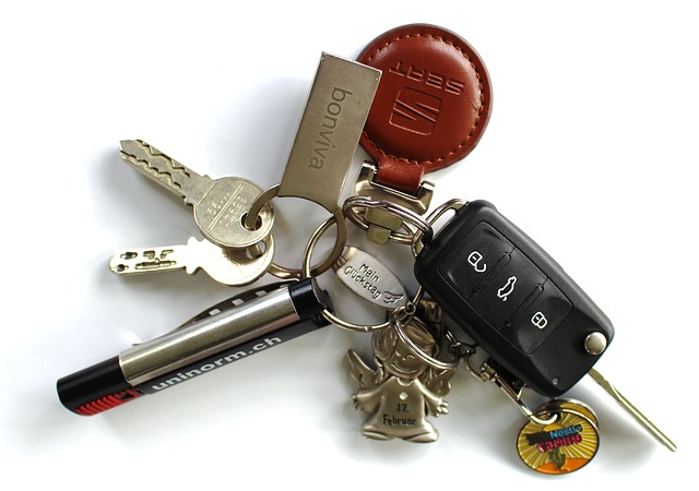Programable key remote